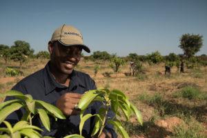 Morila-farming randgold resources