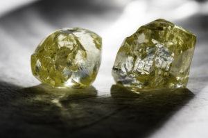 Two Finsch diamonds of 36 carat and 43 carat - November 2013