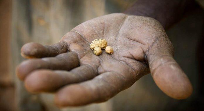 Kibo Mining gold exploration
