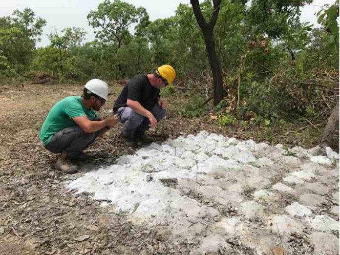 Kodal Minerals