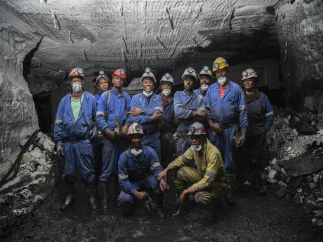 kangra coal