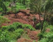 cluff west africa 4